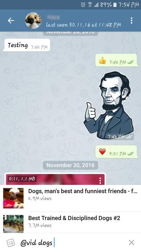 Vid Dogs