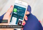 send_gif_whatsapp